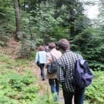 10. Przez 16-hektarowy rezerwat prowadzi ścieżka...