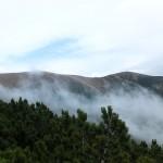 12. ...wschodni grzbiet nad kosówką i mgłą.