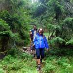 38. Zejście ze szczytu prowadziło najpierw wygodną ścieżką leśną...