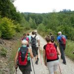 8. Podchodziliśmy w górę żółtym szlakiem...