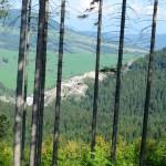2. ...ścieżką leśną z widokiem na kamieniołom pod Palenicą.