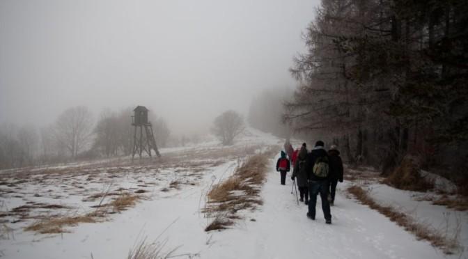 19. W stronę szczytu Dziady (647) szliśmy drogą wzdłuż Lasu Bełchowskiego.