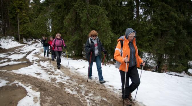21. W lesie śnieg nie wszędzie zszedł.