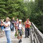 10. przekraczaliśmy mostki na potoku Suchej Wody…