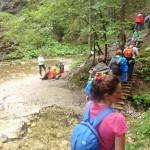 21. Mijamy krzyżówkę ze szlakiem żółtym prowadzącym na Klaštorisko.
