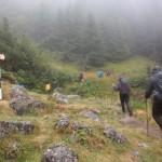 16. …ale pełni werwy trawersowaliśmy stok świerkowym lasem…