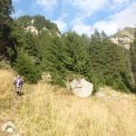71. Dopiero znacznie niżej wychynęliśmy na trawiaste łąki zbyt strome na rozbicie namiotów.