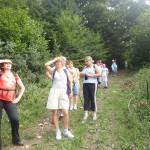 7. Opuszczając las naszym oczom ukazał się widok…