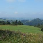 8. …na krajobraz typowy dla Pienin i Spiszu.