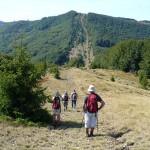 10. W drodze na Kamienną mieliśmy niską przełęcz…