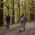 24. Schodziliśmy do Stefanowej pięknie przebarwionym lasem…