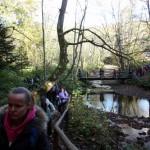 2. …ruszyliśmy podmokłą olszyną wzdłuż potoku…