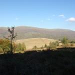 32. …wychynęliśmy wprost na polanę z widokiem na Połoninę Caryńską.