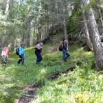 14. ...ruszyliśmy zakosami niebieskiego szlaku przez świerkowy las...