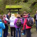 2. W drodze do jaskini zapoznaliśmy się ze zjawiskami krasowymi...