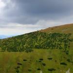 35. …bajkowe stoki Ludarovej Holi za kotłem...