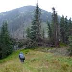 47. My przed przełęczą Javorie musieliśmy włożyć peleryny.