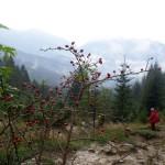 18. … uciekaliśmy z mgły w częściowe widoki w dolinie.