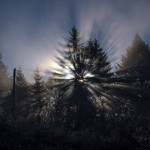 34. Podziwialiśmy refleksy promieni słonecznych…