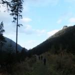 37. Nad lasem w niebo strzelały skały Rovienek…