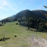39. Na podejściu przełęcz malała a Stoh potężniał.