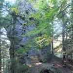 62. Niżej w lesie minęliśmy skalną maczugę…