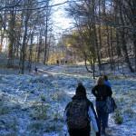 16. Końcówka podejścia lasem była oczekiwaniem na widok…