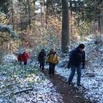 7. Rozpoczęliśmy podejście lasem, w którym spadły śnieg…