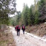 2. ...i najpierw drogą leśną w głąb doliny...