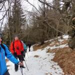 21. Przechodzimy przez podszczytowy las bukowy...