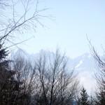 4. ...z widokiem na Tatry w koronach drzew.
